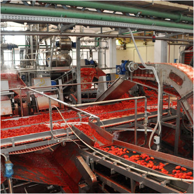 6-Industria-alimentare